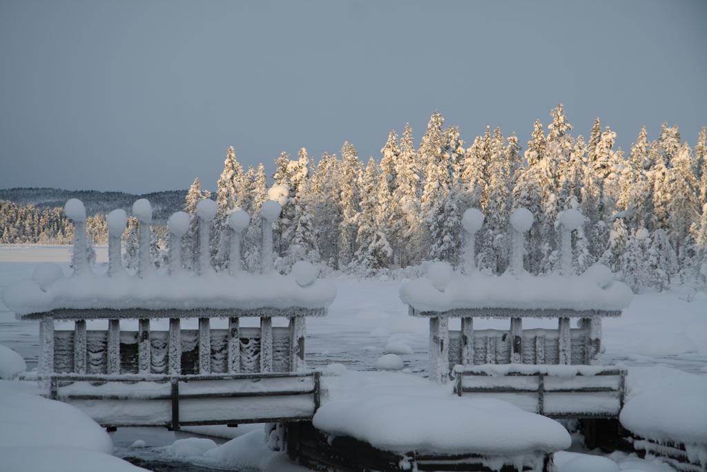 Norvidammen. Foto Torbjörn Sandling